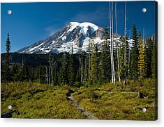 Acrylic Print featuring the photograph Mount Rainier From Snow Lake Trail by Bob Noble Photography