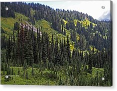 Acrylic Print featuring the photograph Mount Rainier Ridges And Fir Trees.. by Tom Janca
