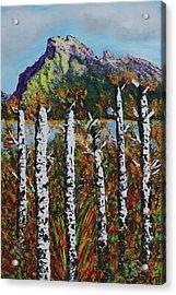 Mount Rundle Banff Alberta Acrylic Print by Joyce Sherwin