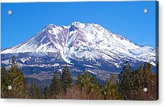 Mount Shasta California February 2013 Acrylic Print by Michael Rogers