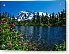 Mount Shuksan And Highwood Lake Acrylic Print