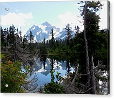 Mount Shuksan Reflection Acrylic Print