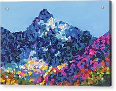 Mountain Abstract Jasper Alberta Acrylic Print by Joyce Sherwin