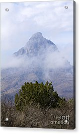 Mountain Cloaked Acrylic Print