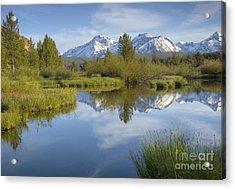 Mountain Daydream Acrylic Print by Idaho Scenic Images Linda Lantzy
