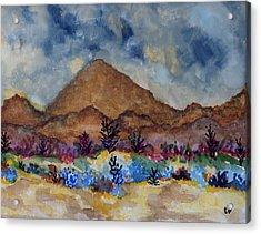 Mountain Desert Scene Acrylic Print