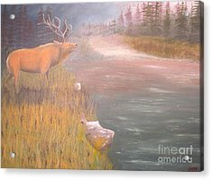 Mountain Elk Original Oil Painting Acrylic Print by Anthony Morretta