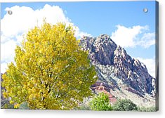 Mountain Fall Acrylic Print