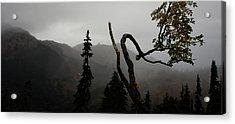 Mountain Fog Acrylic Print