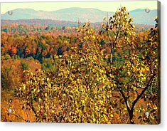 Mountain Foliage Series 012 Acrylic Print
