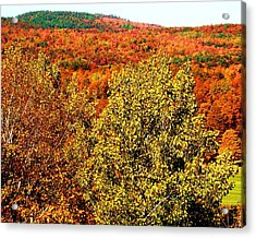 Mountain Foliage Series 016 Acrylic Print