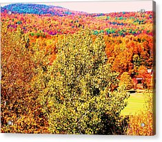 Mountain Foliage Series 017 Acrylic Print