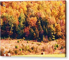 Mountain Foliage Series 057 Acrylic Print