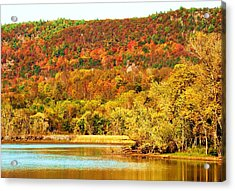 Mountain Foliage Series 067 Acrylic Print