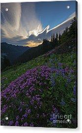 Mountain Heather Dawn Acrylic Print