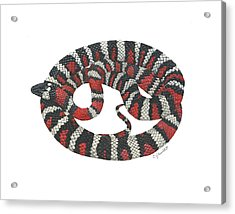 Mountain King Snake Acrylic Print