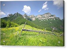 Mountain Landscape  Acrylic Print by Ioan Panaite