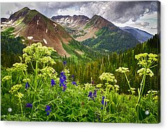 Mountain Majesty Acrylic Print