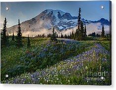Mountain Meadow Serenity Acrylic Print by Mike Reid
