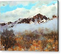 Acrylic Print featuring the painting Mountain Mist by M Diane Bonaparte