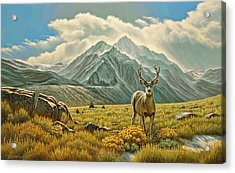 Mountain Muley Acrylic Print