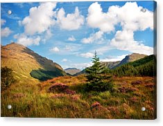 Mountain Pastoral. Rest And Be Thankful. Scotland Acrylic Print by Jenny Rainbow
