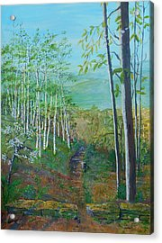 Mountain Path Acrylic Print by Christine Lathrop