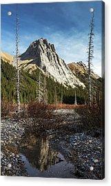 Mountain Peak Reflecting In Still Rocky Acrylic Print by Michael Interisano