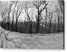 Mountain Road Acrylic Print by Susan Leggett