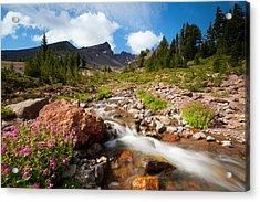 Mountain Runoff Acrylic Print