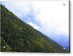 Mountain Side Acrylic Print