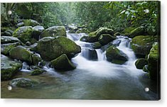 Mountain Stream 2 Acrylic Print by Larry Bohlin