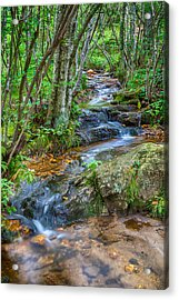 Mountain Stream Acrylic Print by David Cote