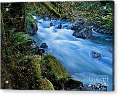 Mountain Stream In Forest - Nooksack River Washington Acrylic Print by Valerie Garner
