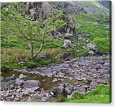 Mountain Stream Acrylic Print by Jane McIlroy
