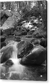 Mountain Stream Monochrome Acrylic Print by Larry Bohlin