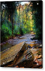 Mountain Stream N.c. Acrylic Print by Bob Pardue