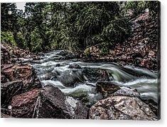 Mountain Stream Acrylic Print by Ray Congrove