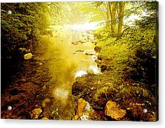 Mountain Stream Summer Acrylic Print