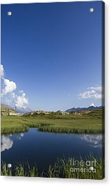 Mountain Swamp Acrylic Print