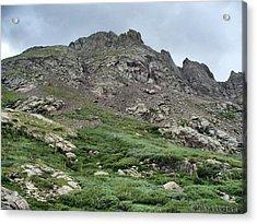 Mountain Top Acrylic Print
