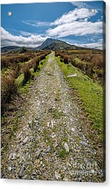 Mountain Track Acrylic Print by Adrian Evans