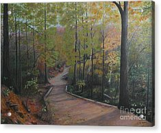 Mountain Trail Acrylic Print