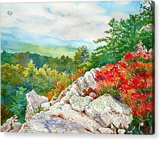 Mountain View From Rocky Cliff With Fall Colors Acrylic Print by Mira Fink