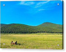 Mountains And Fields Acrylic Print by Mark Andrew Thomas