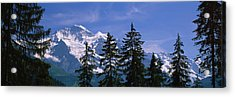 Mountains Covered With Snow, Swiss Acrylic Print