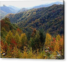 Mountains Leaves Acrylic Print