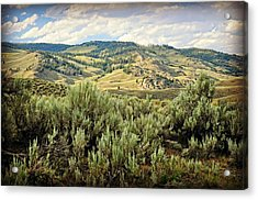 Mountains North Of The Lamar Acrylic Print by Marty Koch