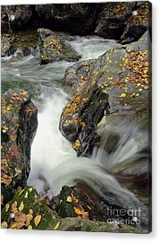 Mountains Stream 2004 Acrylic Print