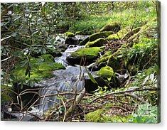 Mountian Cascade Acrylic Print